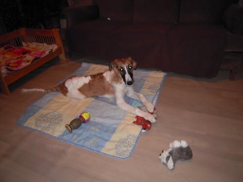 ELFIE a des jouets (26 février 2010) Elfie-27