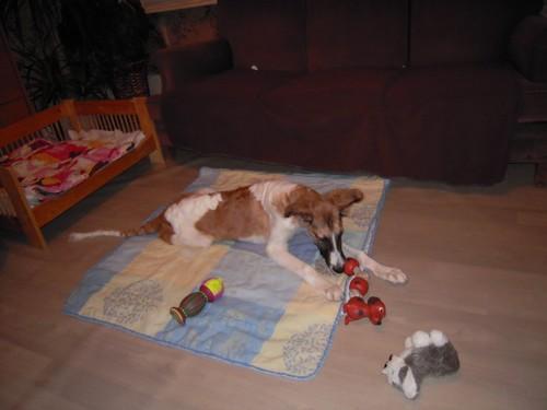 ELFIE a des jouets (26 février 2010) Elfie-28