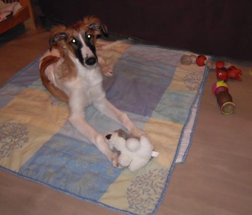ELFIE a des jouets (26 février 2010) Elfie-30