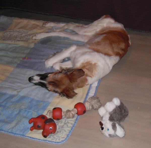 ELFIE a des jouets (26 février 2010) Elfie-32