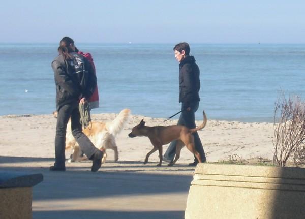 VIP et MAX à la plage (2 mars 2010) Naty-510