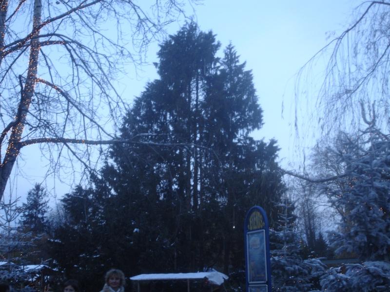 [T][P] 04.12.2010 : Europa Park 04_12_24
