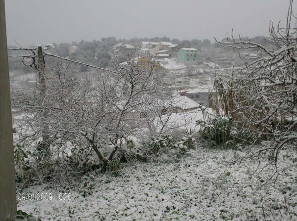 Castedo Branquinho/ Neve Neve210
