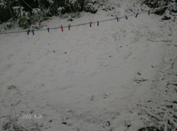 Castedo Branquinho/ Neve Neve310