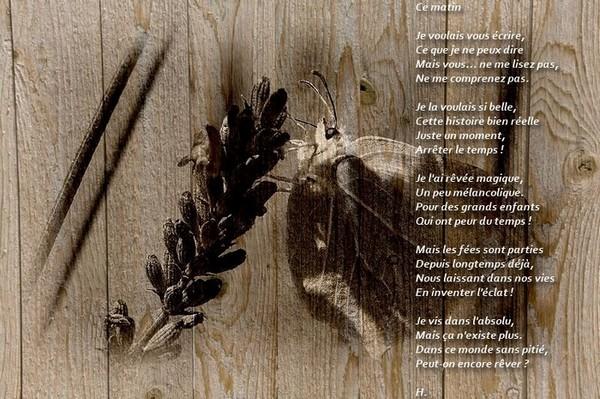 Textes en Images Papill13