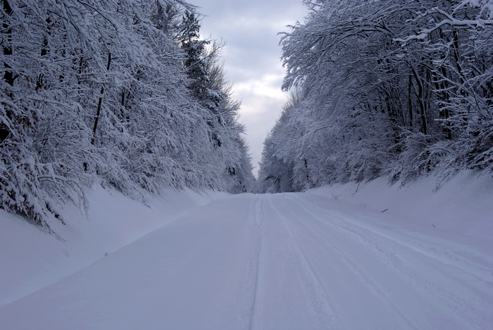 Bienvenue dans notre Sibérie française ! Dsc00616
