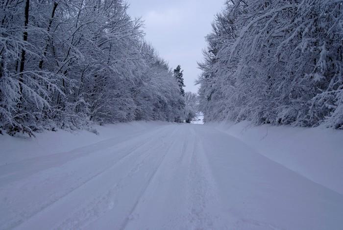 Bienvenue dans notre Sibérie française ! Dsc00617