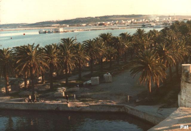 A961 ZINNIA voyage en méditérannée/Mer Rouge 1976 11_pal11
