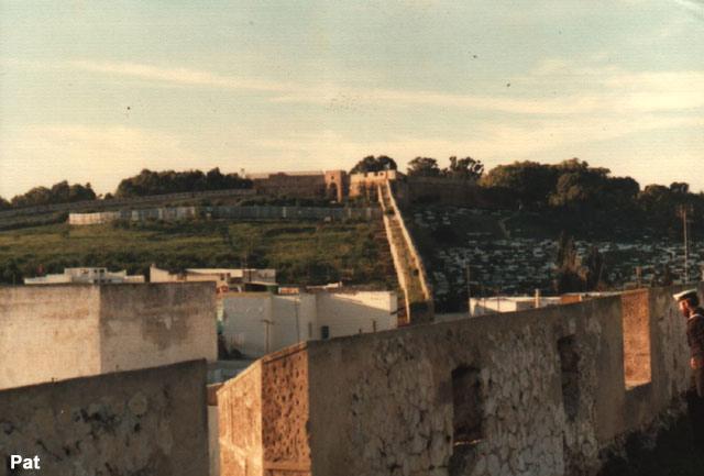 A961 ZINNIA voyage en méditérannée/Mer Rouge 1976 12_pal12