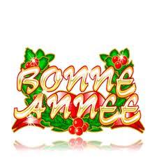 Bonnes Fêtes et Meilleurs Vœux pour 2011 Bonne_10