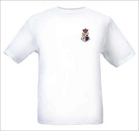 Seriez-vous intéressé par un T-shirt du forum ? Essai_10