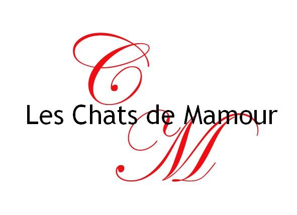 Les Chats de Mamour : ceux qui squattent depuis des années Chats_10