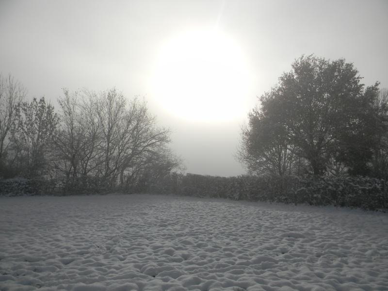 15 cm de neige dans le Morvan ! Nouvelles P1 et P2 Dscn0510