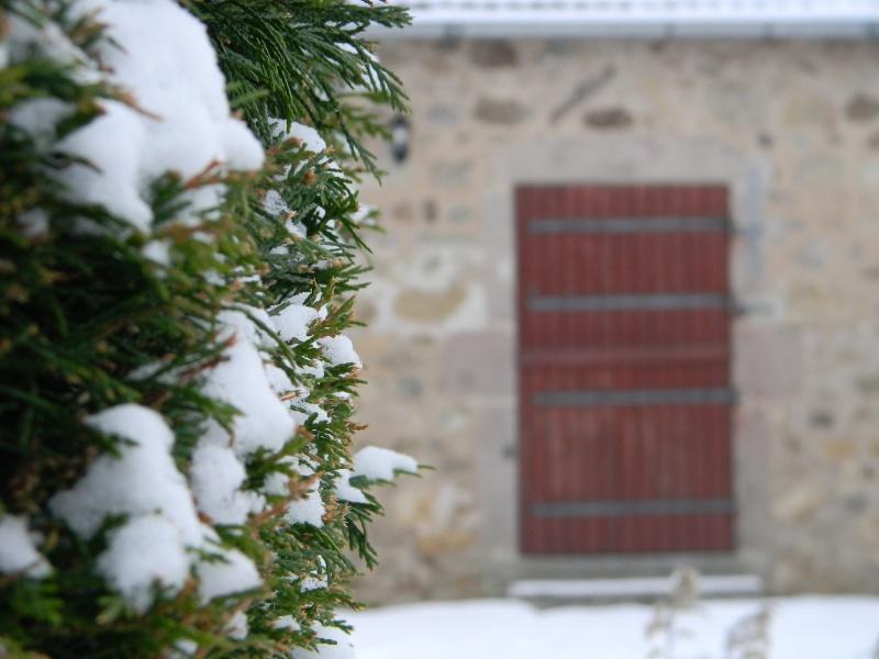 15 cm de neige dans le Morvan ! Nouvelles P1 et P2 Dscn0613
