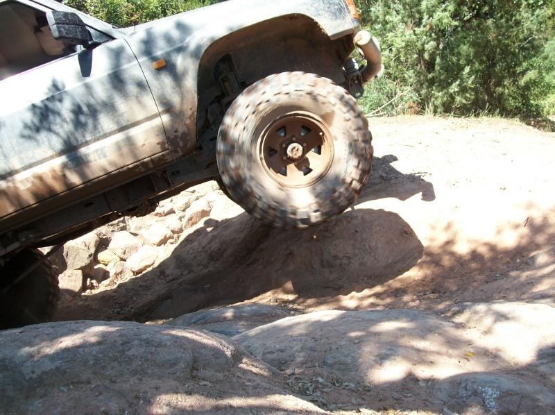 Rasso 2010 les photos et vidéos. Reno_510