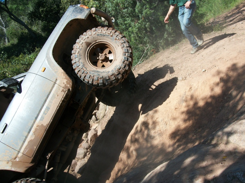 Rasso 2010 les photos et vidéos. Reno_610