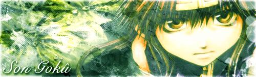 Galerie du futur maître du monde, Day Sakeru !!! Goku_s10
