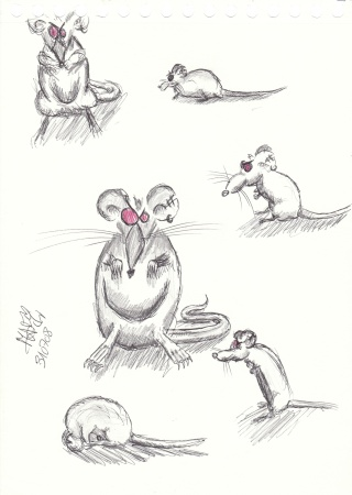 croquis projet BD Img_0019