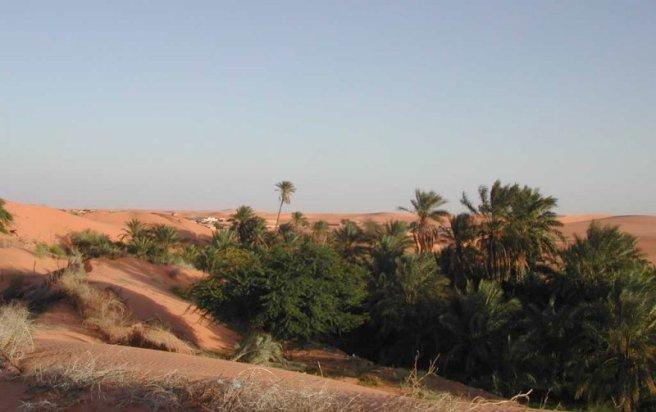 Le Cinéma et le Sahara - Page 2 Chingu10