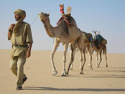 Le Cinéma et le Sahara - Page 2 Filmsa10