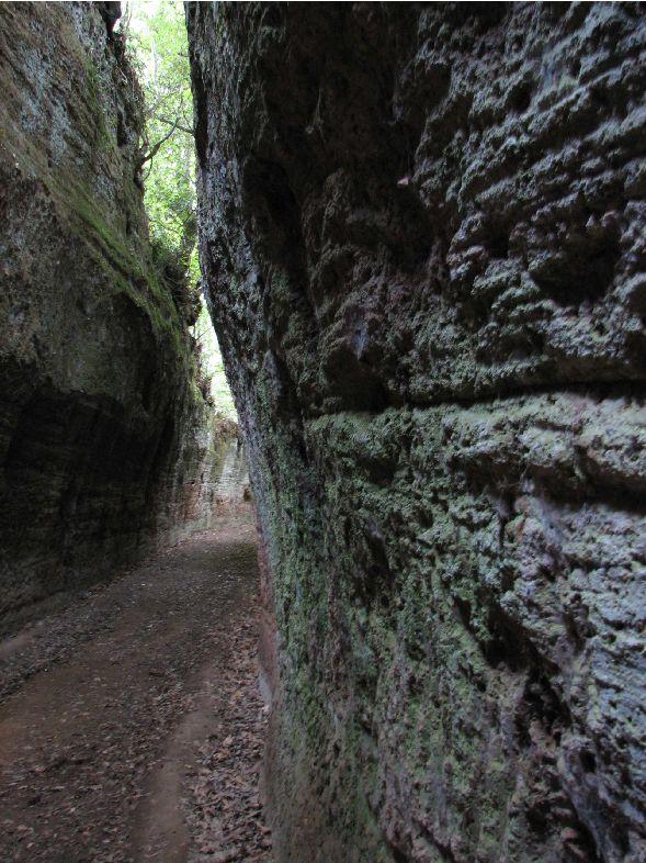 """Etrusques: Les """"vie cave"""" à Sovana - Toscane Captu238"""