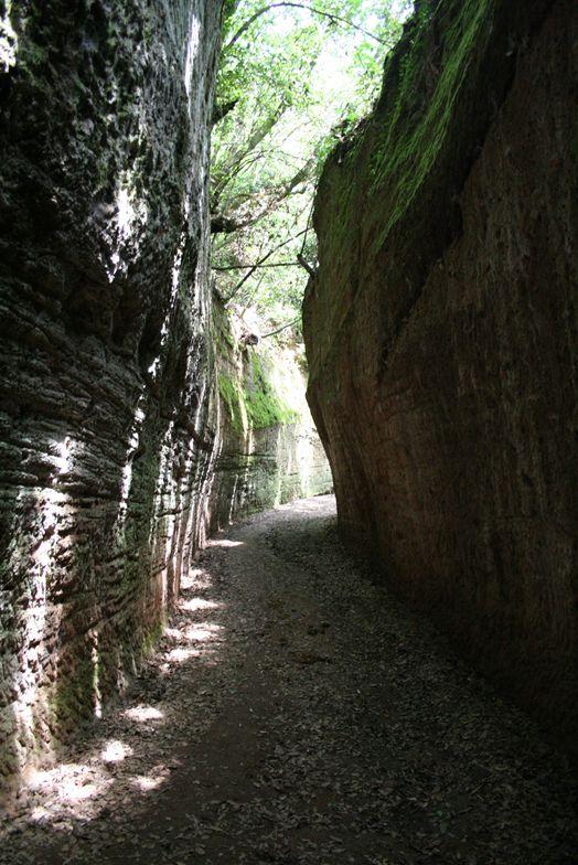 """Etrusques: Les """"vie cave"""" à Sovana - Toscane Captu239"""