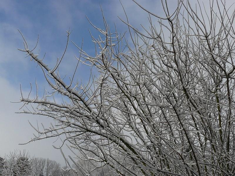 Photos de neige du coté de chez vous - Page 2 Neige-12