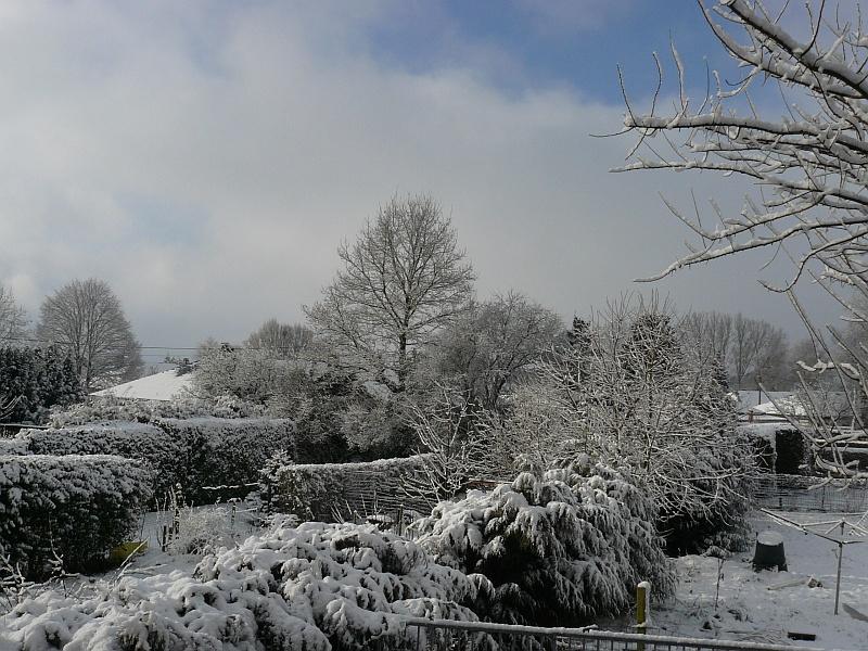 Photos de neige du coté de chez vous - Page 2 Neige-13