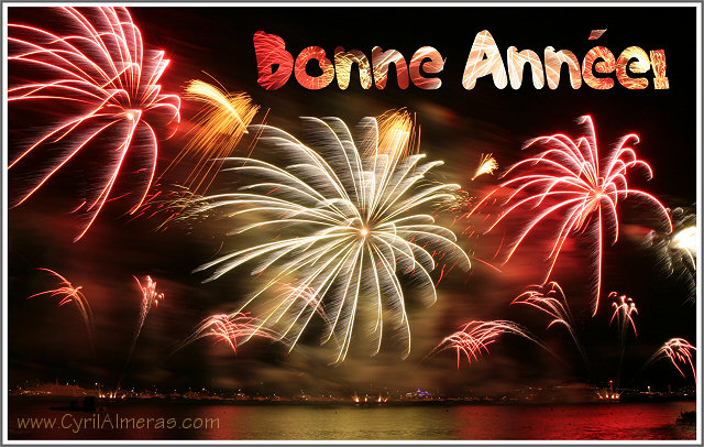 Bonne Fête de fin d'année Carte_11