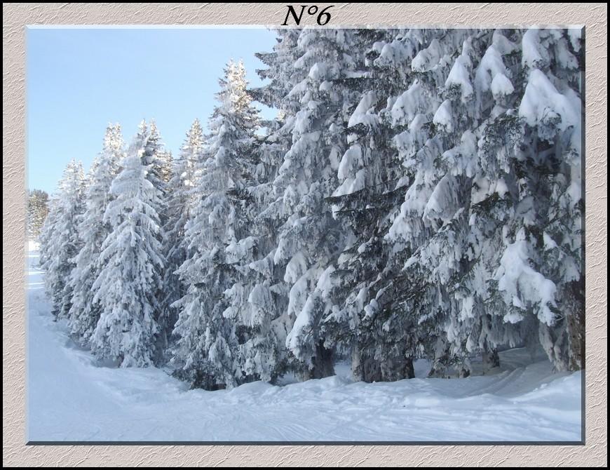 Votes concours hiver  2009-2010 ! Concou15