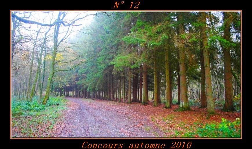 Votes du concours automne 2010 ! Photo112