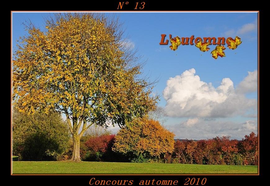 Votes du concours automne 2010 ! Photo113