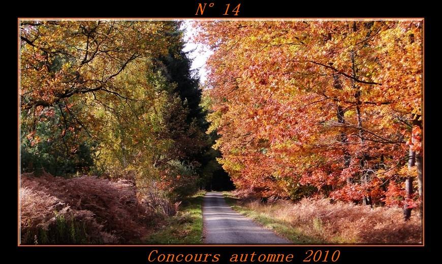 Votes du concours automne 2010 ! Photo114