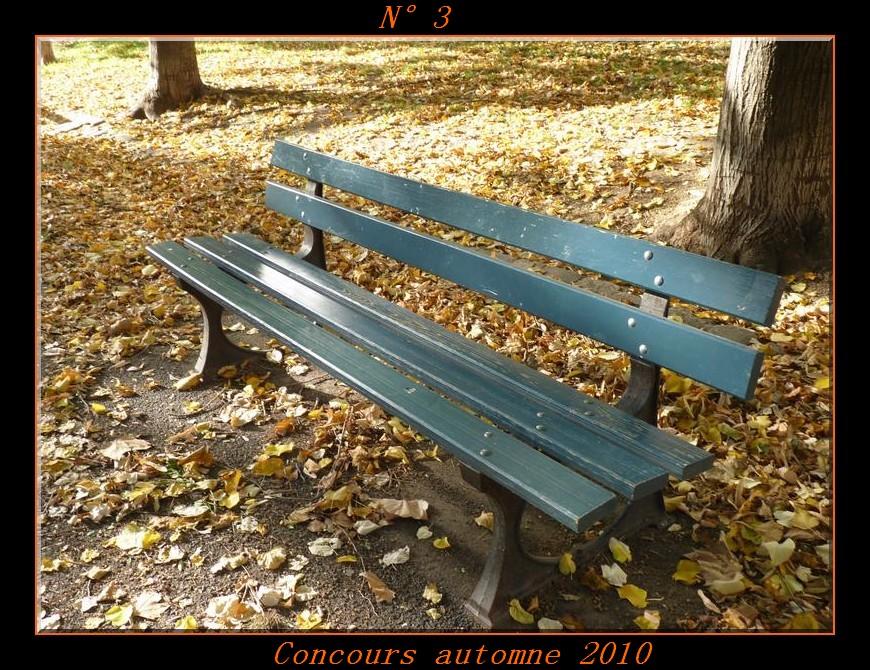 Votes du concours automne 2010 ! Photo310