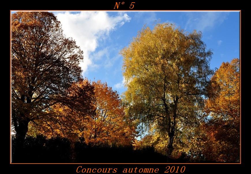 Votes du concours automne 2010 ! Photo510