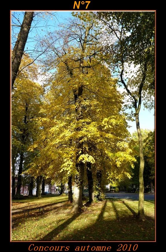 Votes du concours automne 2010 ! Photo710