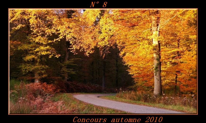 Votes du concours automne 2010 ! Photo810