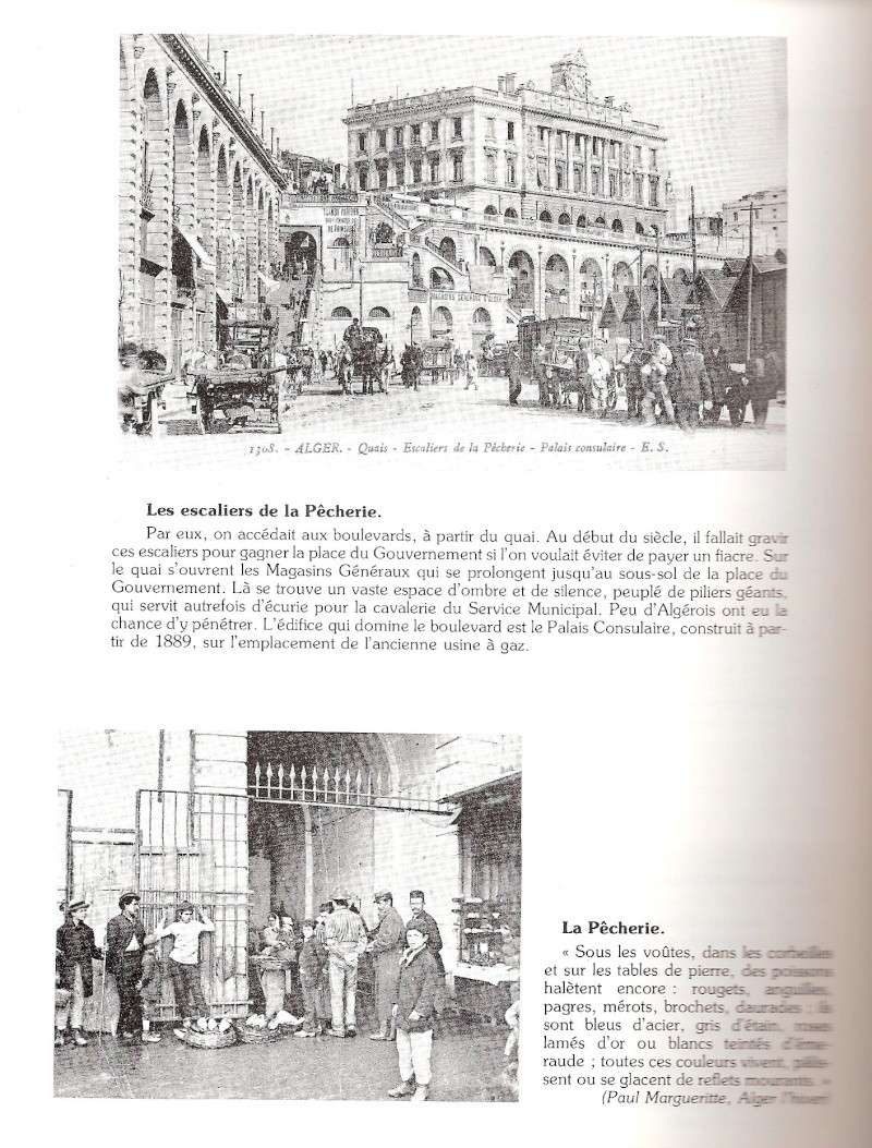 CPA ALGER - Page 2 Scann295