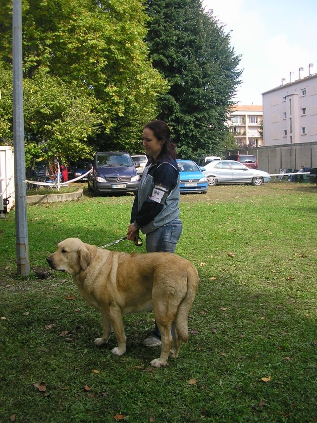 trombinoscope......de nos chiens Pa070010