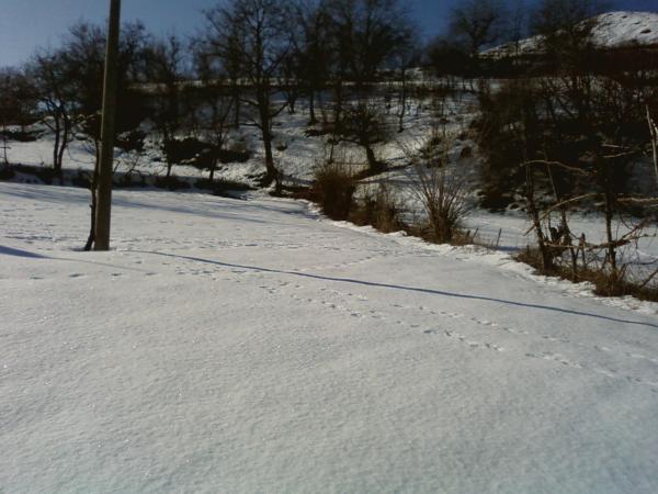 Guri i Bardhe ne Dimer (Foto) 2310