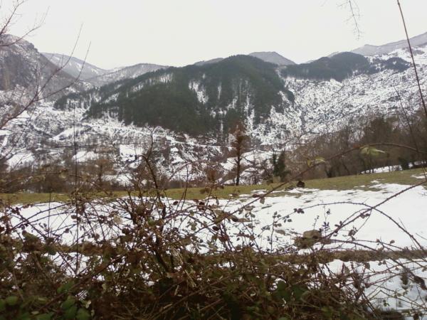 Guri i Bardhe ne Dimer (Foto) 3310
