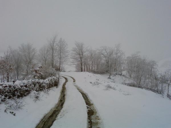 Guri i Bardhe ne Dimer (Foto) 4210