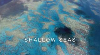 السلسلة الوثائقية الرائعة :: كوكب الأرض Planet Earth :: من إنتاج قنوات BBC (منقول للفائدة) 2029810