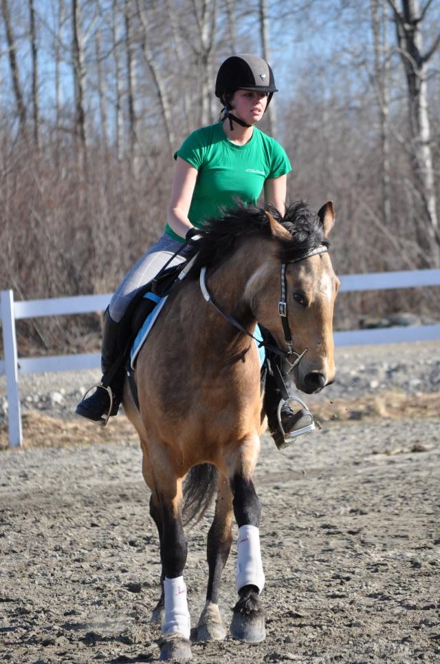 Julie et Sidjy au saut d'obstacle Dsc_0149