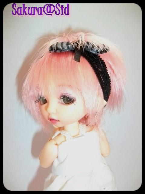[Pukifée Bonnie] Sakura, petite fleur du Japon. Imgp0718