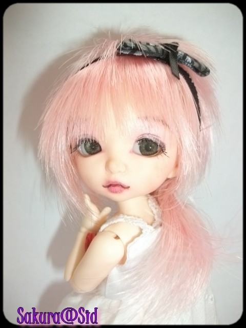 [Pukifée Bonnie] Sakura, petite fleur du Japon. Imgp0719