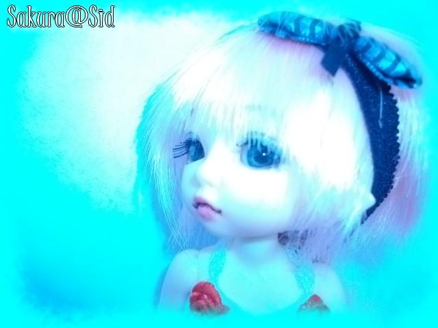 [Pukifée Bonnie] Sakura, petite fleur du Japon. Imgp0721