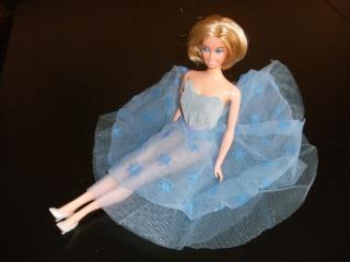 [BARBIE] Les Barbies de nhtpirate1980 Dscf8511