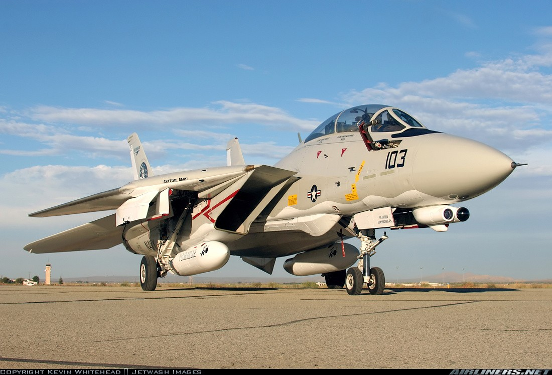 F-14 Tomcat - Page 2 11232210