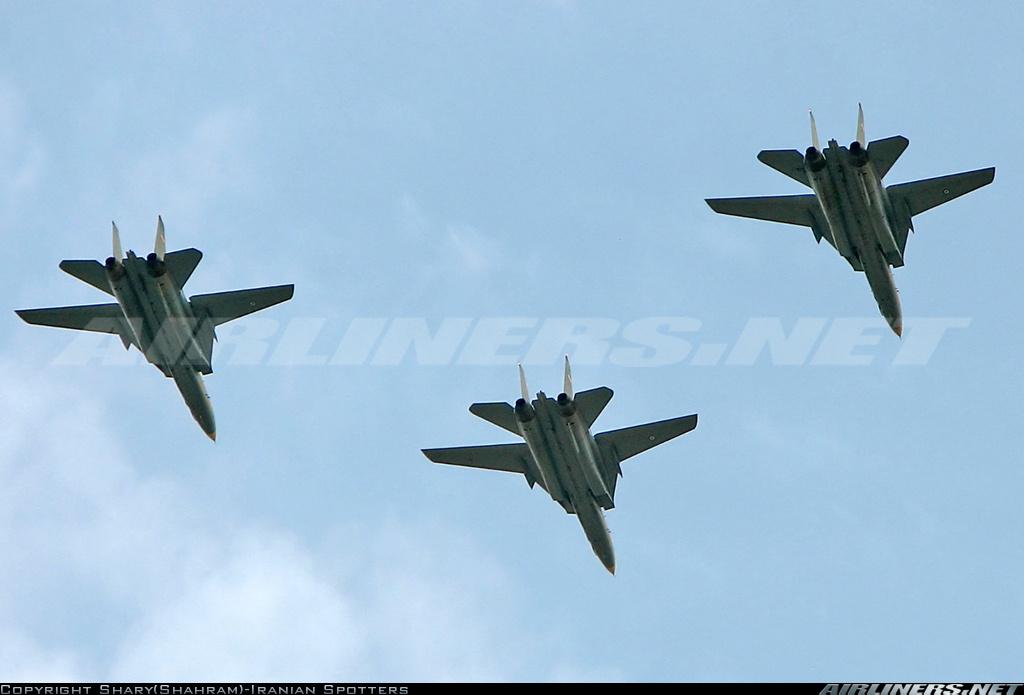 F-14 Tomcat 13824910